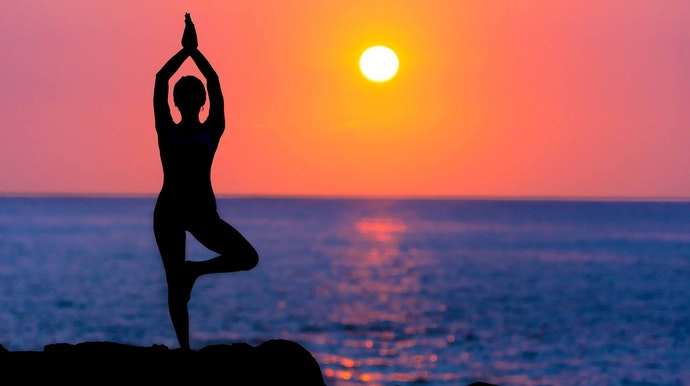 ashtanga joga osam udova joge